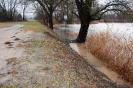 Hochwasser Morgensandsee_6