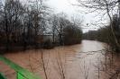 Hochwasser Rems am 13.01.2011